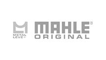 Jedel | Mahler Metal Leve